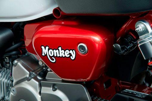 2019 Honda Monkey mini-bike
